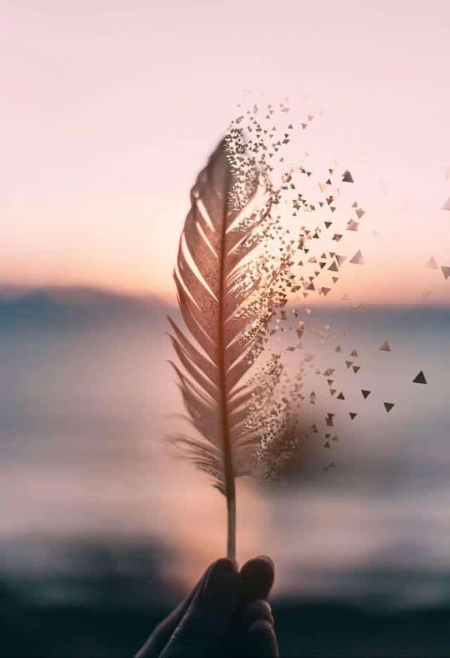 pluma de deseo